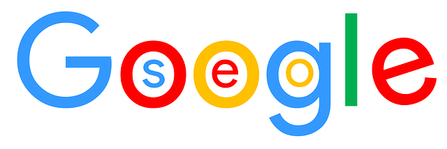 seo v googlu